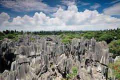 Kamienny las, Yunnan, Chiny Zdjęcia Stock