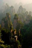 Kamienny lasowy mglisty obrazy royalty free
