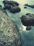 Kamienny morze obrazy royalty free