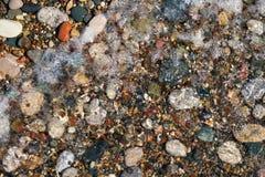 Kamienny naturalny tło Mokrzy otoczaków kamienie w wodzie zdjęcie royalty free