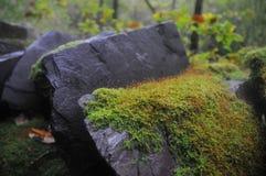 Kamienny ogrodzenie przy łupem Zdjęcie Stock