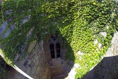 Kamienny okno stary kasztel Przerastający z zielonym loach zdjęcie stock