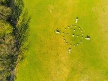 Kamienny okrąg Jest Himmel z góry, Wiedeń, Austria obraz royalty free