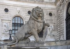 Kamienny rzeźba lew z osłoną, Neue Burg lub New Castle, Wiedeń, Austria zdjęcie stock