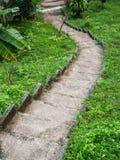 Kamienny schody otaczaj?cy greenery fotografia royalty free