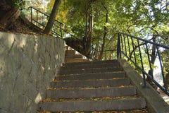 Kamienny schody w parku zdjęcia stock