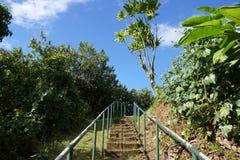 Kamienny schody z metali poręczami do wierzchołka punkt obserwacyjny poi Zdjęcie Stock