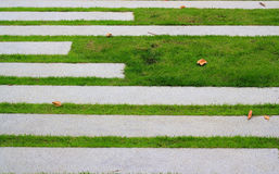 Kamienny sposób w zielonej trawie obraz stock