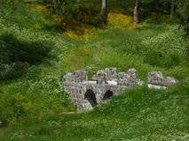 Kamienny stary most w parku wśród bielu i koloru żółtego kwitnie Zdjęcie Royalty Free