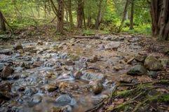 Kamienny strumień Obraz Stock