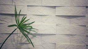 Kamienny tło, tapeta, abstrakt, salowy Obraz Stock