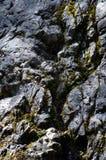 Kamienny tekstury tła zakończenie up Fotografia Stock