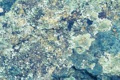 Kamienny tekstury tło dla wewnętrznego zewnętrznego projekta Obraz Royalty Free