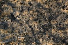 Kamienny tekstury tło w słonecznym dniu Zdjęcie Royalty Free