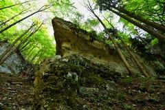 Kamienny Tytaniczny Zdjęcia Stock