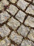 Kamienny wzór Fotografia Stock