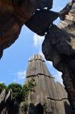 Kamienny Yunnan las Zdjęcie Stock