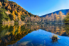 Kamikochi το φθινόπωρο στοκ φωτογραφία με δικαίωμα ελεύθερης χρήσης