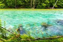 Kamikochi Azusa River Colorful Turquoise Water H Stock Images