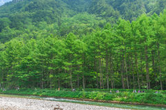 Kamikochi in Nagano, Japan Stock Photography