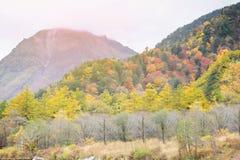 Kamikochi national park in autumn Japan. Landscape natural view of Kamikochi national park in autumn Japan Royalty Free Stock Image