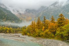 Kamikochi in rainy day and foggy weather. Royalty Free Stock Image