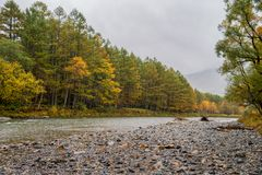 Kamikochi in rainy day and foggy weather. Stock Image