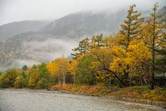Kamikochi in rainy day and foggy weather. Royalty Free Stock Photos