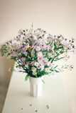 kamille Wildflowers in einem Glas Lizenzfreie Stockfotografie