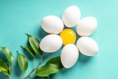 Kamillen-Gänseblümchen vom Ei und Eigelb verlassen Ostern-Frühlingskonzept Stockfotos