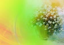 Kamillenblumenstrauß Lizenzfreie Stockfotos