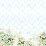 Kamillenblumenstrauß auf blauem Sparrenhintergrund Handgemalte Aquarellillustration für Grußkarten Lizenzfreies Stockbild