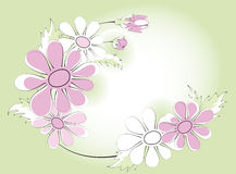 Kamilles, vignet stock illustratie