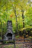 Kamin im Wald Stockbild