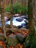 Kaminoberteilewasserfall Stockfotografie