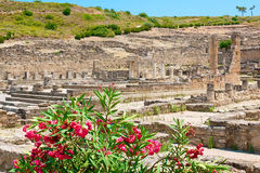 Kamiros ruins. Rhodes, Greece. Archaeological site of ancient Kamiros. Rhodes, Greece Royalty Free Stock Photo