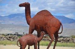 Kamlet & behandla som ett barn statyn i öknen Arkivbild