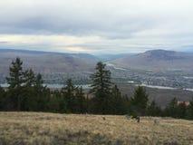 kamloops城市美好的风景看法从山的顶端 库存图片