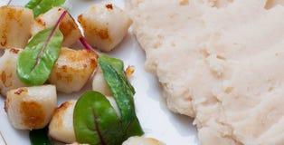 Kamm-Muscheln mit gestampften Bohnen Stockfotografie
