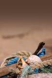 kamma för strand Fotografering för Bildbyråer