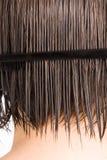 kamma hårkvinnan royaltyfria bilder