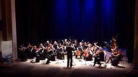 Kammarorkester för fyra säsonger stock video
