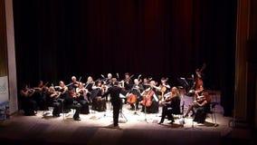 Kammarorkester för fyra säsonger lager videofilmer