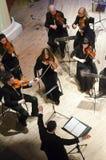 Kammarorkester för fyra säsonger Fotografering för Bildbyråer