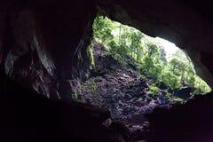 Kammer und Eingang von Rotwild höhlen, Nationalpark Mulu, Sarawak aus stockfotos