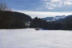 Kammerhof in de winter Stock Foto