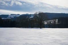 Kammerhof im Winter Stockbilder
