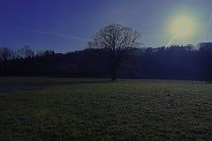 Kammerhof an März-Kreuz verarbeitet Stockbild