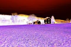 Kammerhof przy Marzec jako koloru negatyw Obrazy Royalty Free