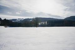 Kammerhof w zimie Zdjęcia Stock